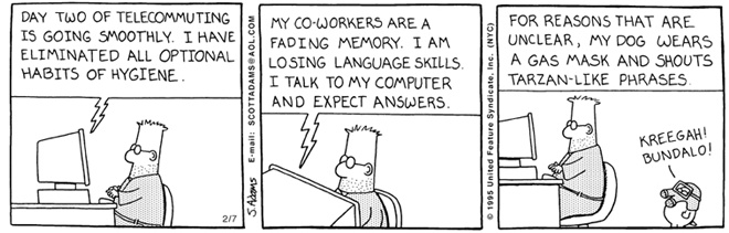 dilbert work from home